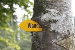 Bild Wanderwegtafel